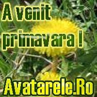 Avatare Primavara