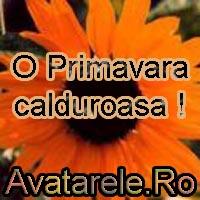 Fotografii De Primavara