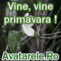 Felicitari De Primavara