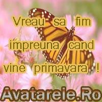 Imagini De Primavara